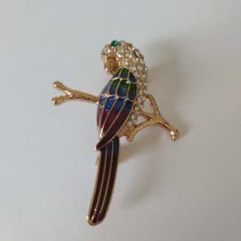 Kleuren combi broche (paars |vogel3)