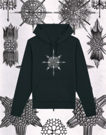 Haeckel Sweater: Acanthophracta