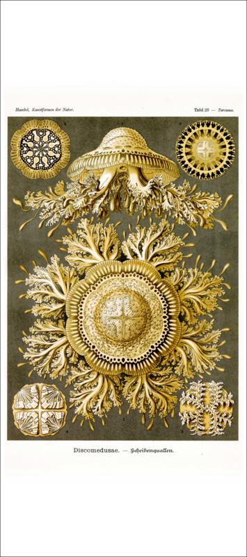 Tafel 28: Toreuma