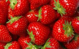 Vegan Lippenbalsem Strawberry