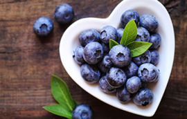 Vegan Lippenbalsem Blueberry
