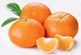 Vegan Lippenbalsem Mandarin