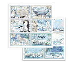 Arctic Antarctic Cards 12x12 Inch Paper Sheets