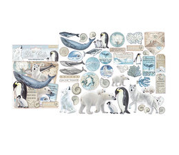 Arctic Antarctic Die Cuts