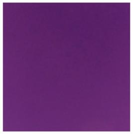 10x scrapvellen violet 12x12inc