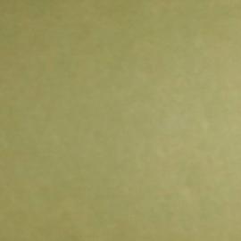 10X Scrapbookvellen 302X302mm Mosterdgroen
