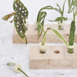 Hold it grow stekplankje - Roosmarijn Knijnenburg