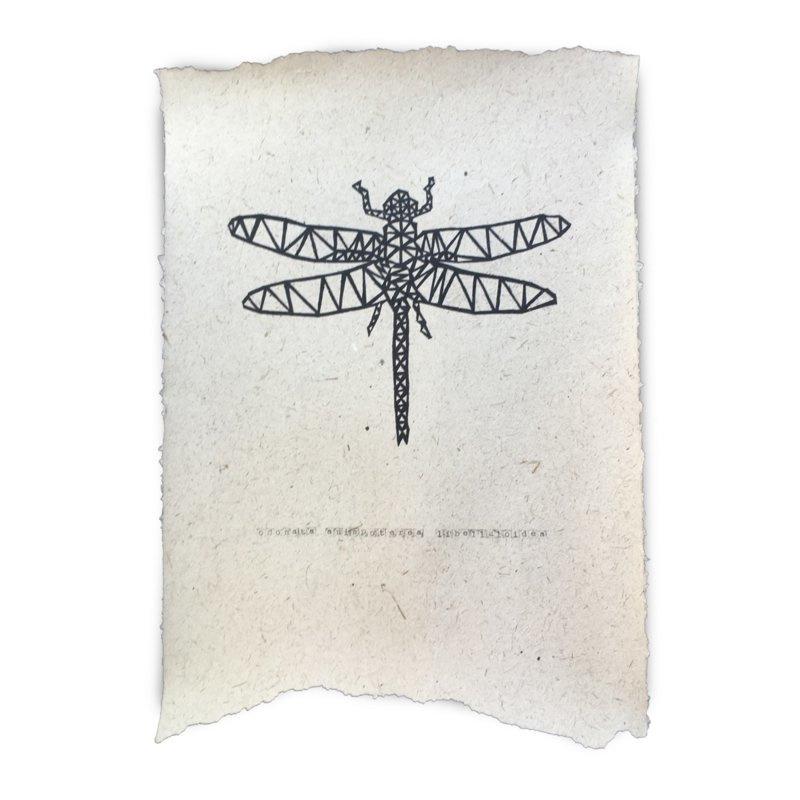 Libelle - NAdesign