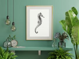 Poster Zeepaardje