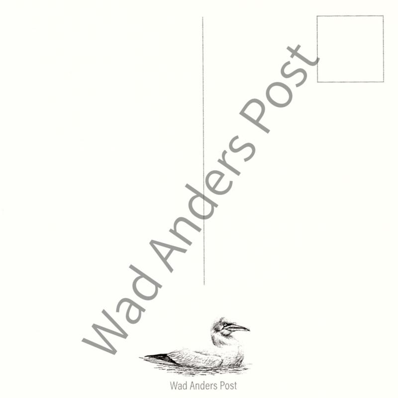 Ansichtkaart De Jan Van Gent