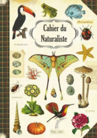 Geïllustreerd Notebook Naturaliste - Gwenaëlle Trolez Créations