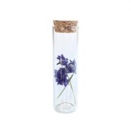 Glazen buisje met paarse bloemen - Blooming by Flinde
