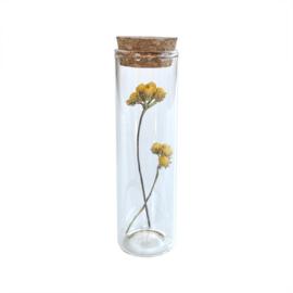 Glazen buisje met gele bloemen - Blooming by Flinde