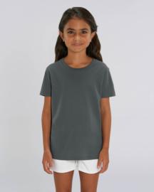 Anthracite capsule t-shirt