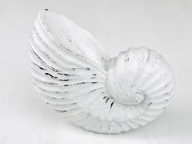 Houten Nautilus