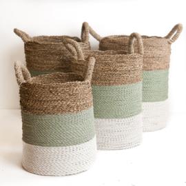 Mand groen-grijs/wit/neutraal waterhyacint
