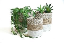 Plantenmand wit/neutraal/wit-neutraal waterhyacint