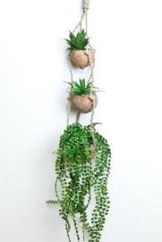 Cocos plantenhanger set van 3