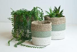 Plantenmand grijsgroen/wit/neutraal waterhyacint