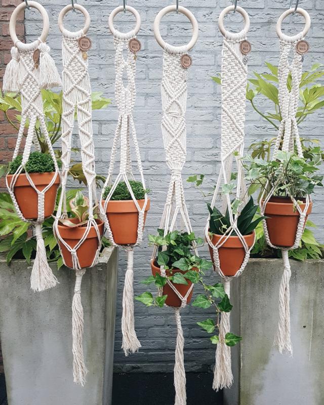Plantenhanger 1