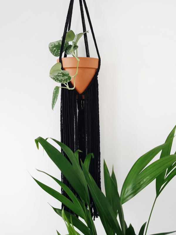 Plantenhanger 4