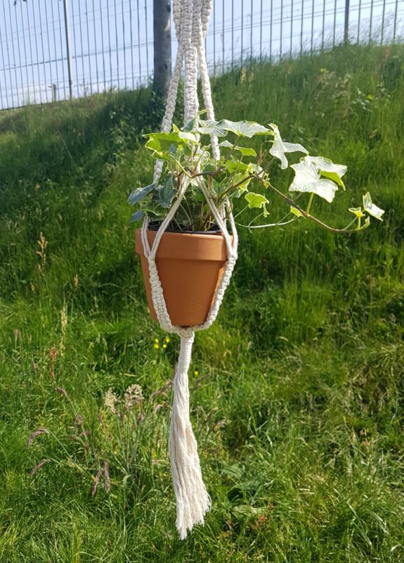 Plantenhanger 2