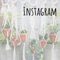 Instagram - Studio Wollig