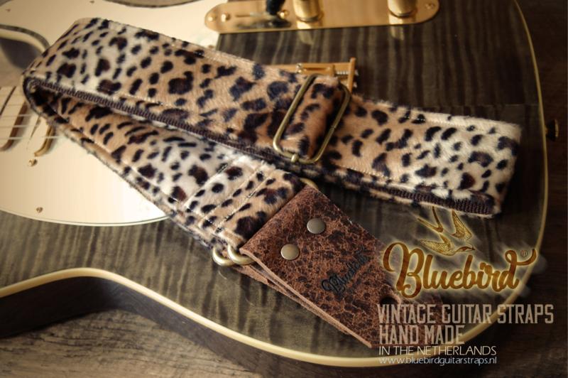 Bluebird Modern Series - Mad Cheetah