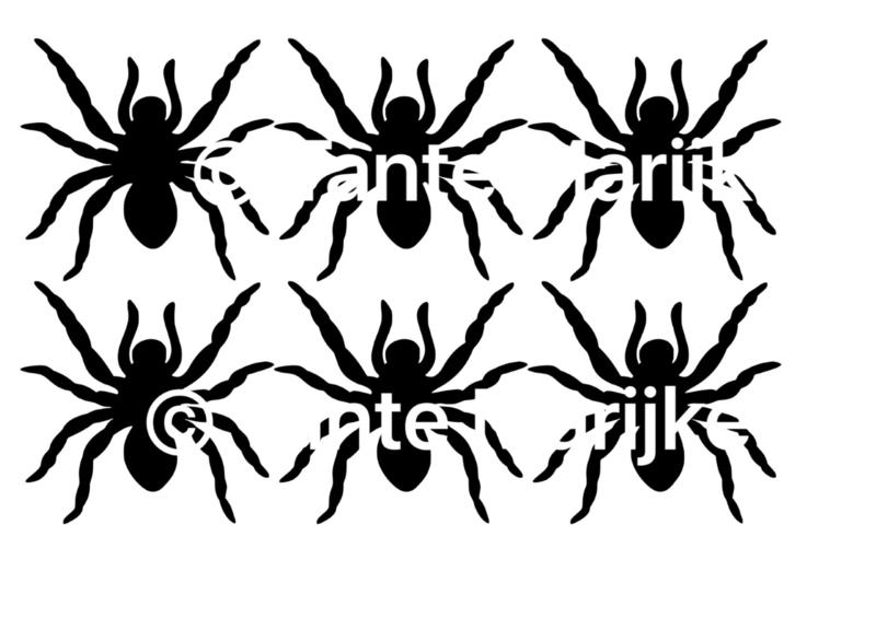 Spinnen Halloween