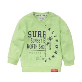 Dirkje sweater green