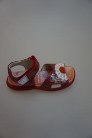 Daumling, leren sandaal met klittenbanden, sluiting verstelbaar, smal, reptiel print, leer gevoerd, rood 30 31