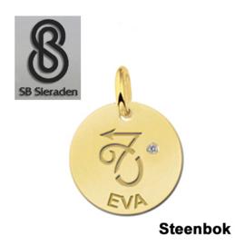 BEDEL-Sterrenbeeld- 14 krt goud met luxe Zirconia