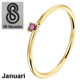 14 krt gouden Geboorte steen ring. HANDGEMAAKT