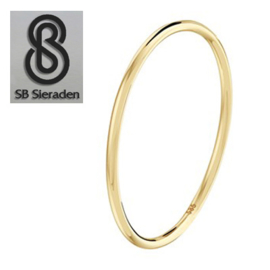 14krt gouden ring 1mm dik.