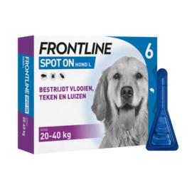 Vlooiendruppels Frontline hond L (20-40 kg)