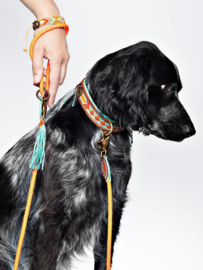 Dog leash carrot