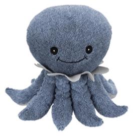 Texel octopus