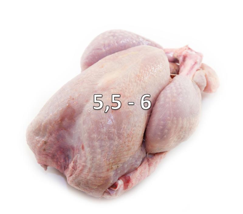 KALKOEN 5,5 - 6 KG