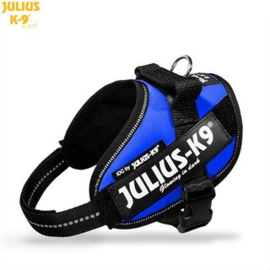 Julius K9 IDC powerharness mini