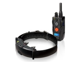 Electronic training collars