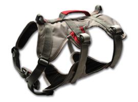 Doubleback harness