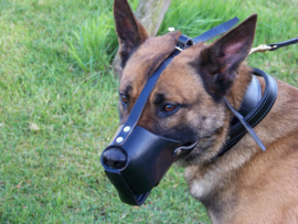 Leather muzzle with quick release