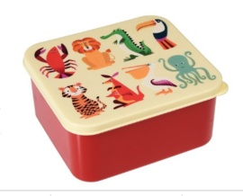 Lunchbox Colorful Creatures
