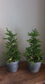 Kunstkerstboom 40cm in zinkrn pot