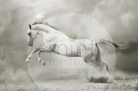 WHITE HORSE - MINT BY MICHELLE DECOUPAGE PAPIER -A3