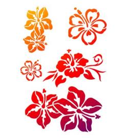 exotische bloemen A4