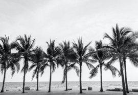 PALM TREES mint by michelle decoupagepapier A3