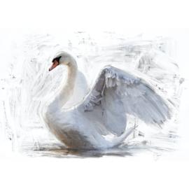 WHITE SWAN - MINT BY MICHELLE DECOUPAGE PAPIER -A1