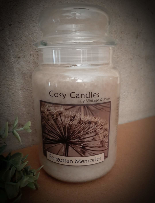Cosy Candle Forgotten Memories