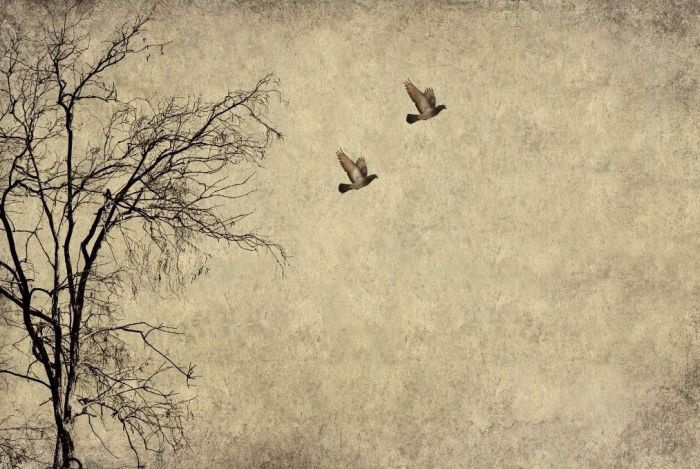 FLYING BIRDS mint by michelle decoupage papier A3